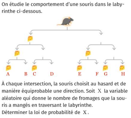 Une souris dans un labyrinthe : exercices en 1ère S.