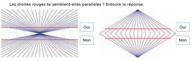 Droites parallèles : exercices en CM1.
