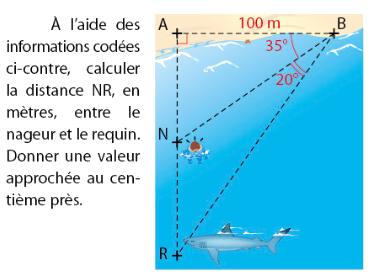 Calcul de la distance entre un nageur et un requin : exercices en 2de.