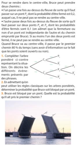 Chemins et arbre de probabilités : exercices en 1ère S.