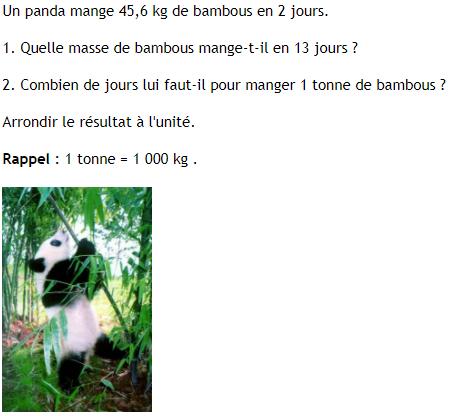 problème du panda-proportionnalité : exercices en 4ème.