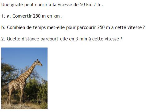 Vitesse moyenne d'une girafe . : exercices en 4ème.