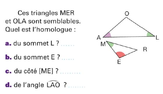 Deux triangles semblables : exercices en 4ème.