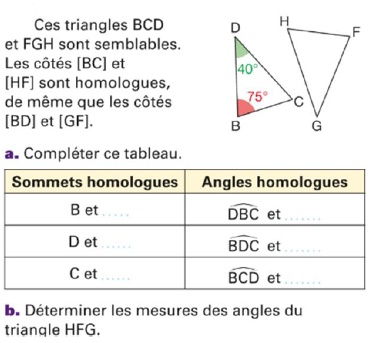 Côtés homologues : exercices en 4ème.