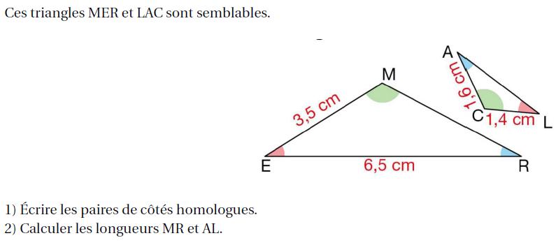 Cotés homologues et longueurs : exercices en 4ème.