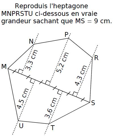 Reproduire l'heptagone : exercices en CM2.