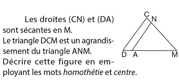 Homothétie et théorème de Thalès : exercices en 3ème.