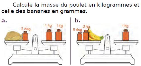 Calculer la masse d'un poulet : exercices en CM2.