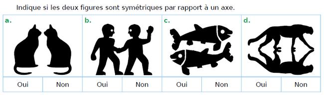 Figures symétriques par rapport à un axe : exercices en CM1.
