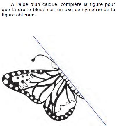 Compléter le symétrique avec un calque : exercices en CM2.