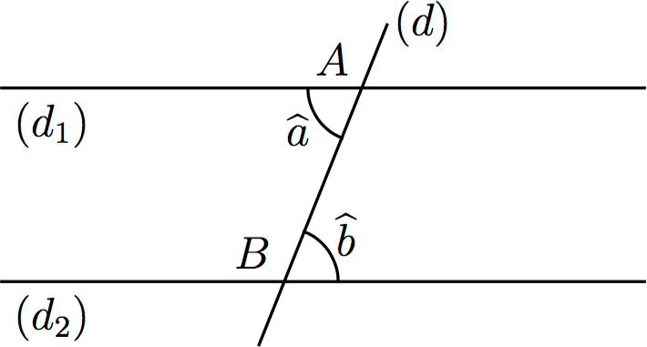 angles alternes-internes propriété