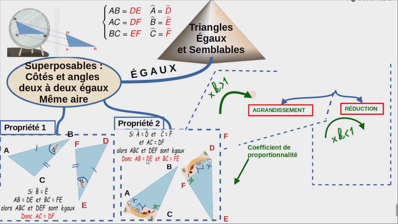 carte mentale triangles semblables